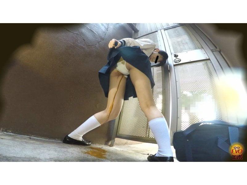 【排便盗撮】放課後女子校生の下校中下痢便お漏らし その1